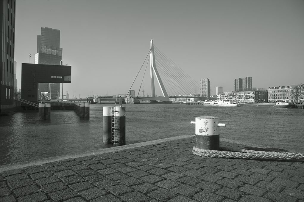 Rotterdams pr-bureau Wij van 010